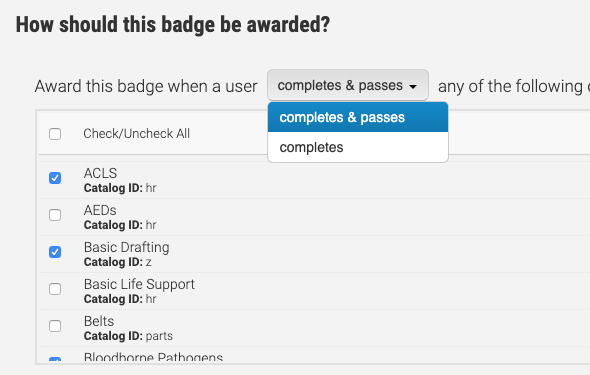 Badge Requirements